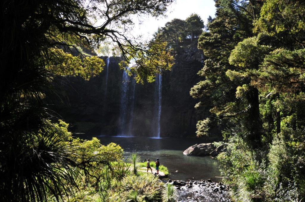 Whangarai Falls